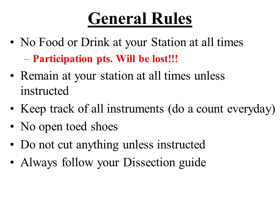 General Rules No Food or Drink at your Station at all times