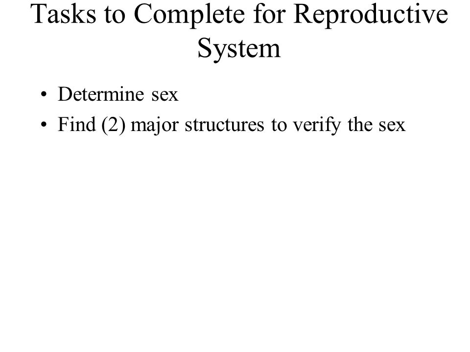 Tasks to Complete for Reproductive System