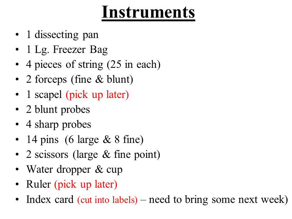 Instruments 1 dissecting pan 1 Lg. Freezer Bag