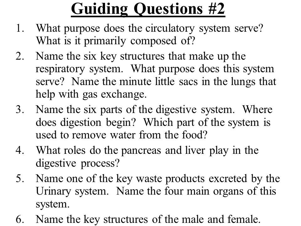 Guiding Questions #2 What purpose does the circulatory system serve What is it primarily composed of