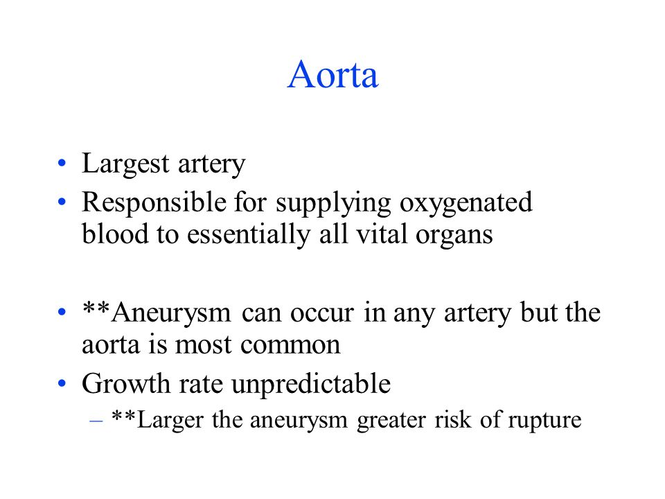 Aorta Largest artery. Responsible for supplying oxygenated blood to essentially all vital organs.
