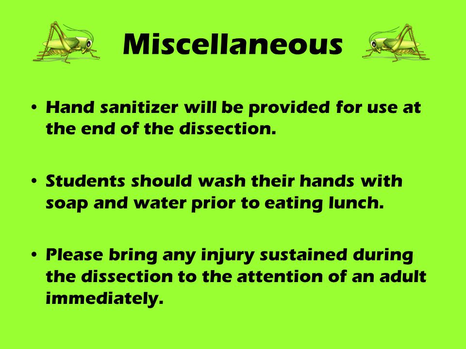 Miscellaneous Hand sanitizer will be provided for use at the end of the dissection.