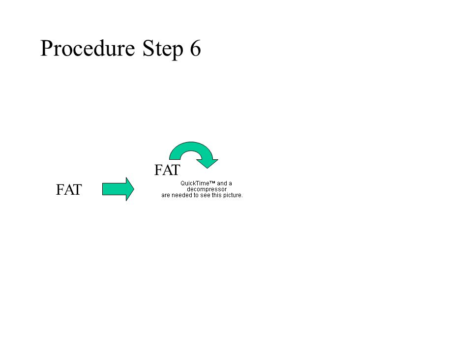 Procedure Step 6 FAT FAT