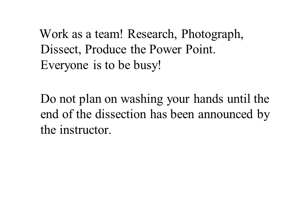 Work as a team. Research, Photograph, Dissect, Produce the Power Point