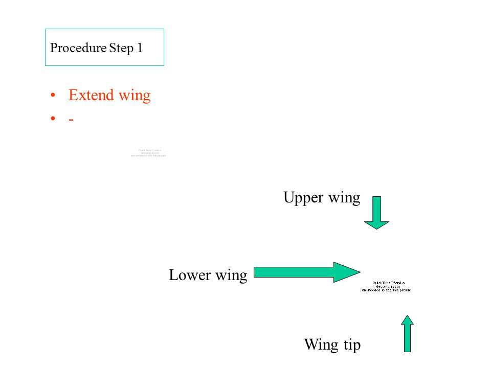 Procedure Step 1 Extend wing - Upper wing Lower wing Wing tip