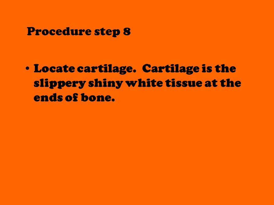 Procedure step 8 Locate cartilage.