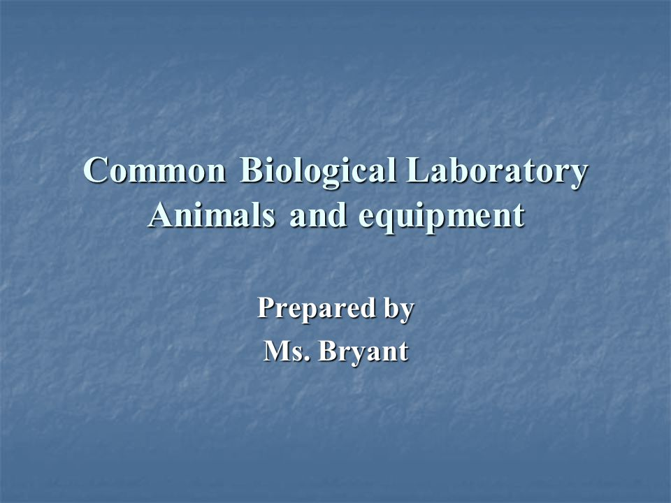 Common Biological Laboratory Animals and equipment