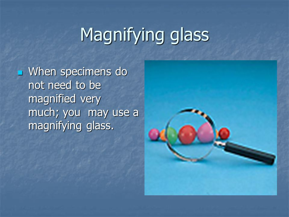 Magnifying glass When specimens do not need to be magnified very much; you may use a magnifying glass.