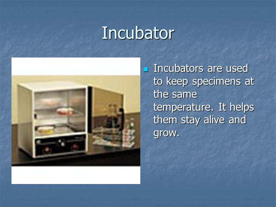 Incubator Incubators are used to keep specimens at the same temperature.