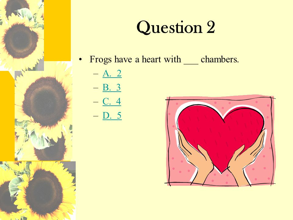 Question 2 Frogs have a heart with ___ chambers. A. 2 B. 3 C. 4 D. 5