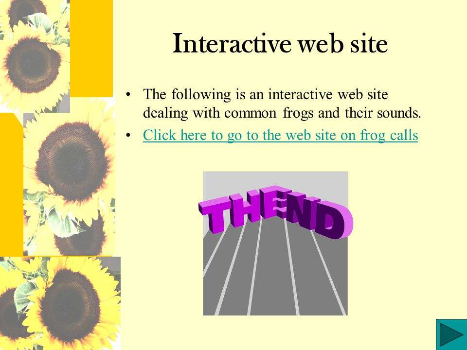 Interactive web site The following is an interactive web site dealing with common frogs and their sounds.