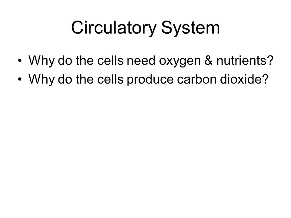 Circulatory System Why do the cells need oxygen & nutrients