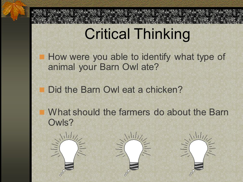 Critical Thinking How were you able to identify what type of animal your Barn Owl ate Did the Barn Owl eat a chicken