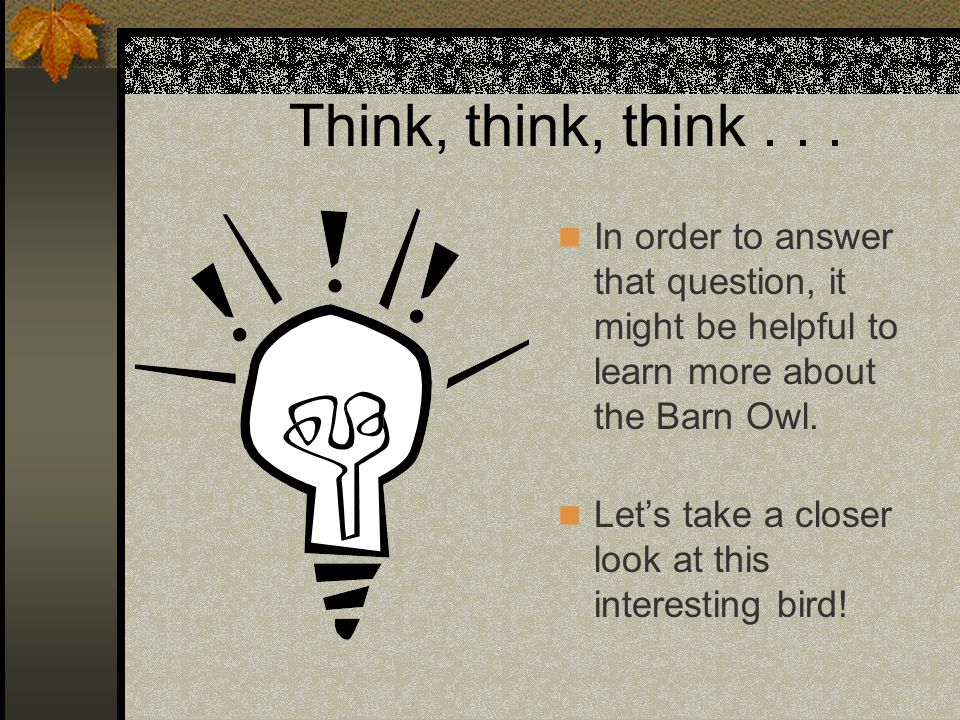 Think, think, think . . . In order to answer that question, it might be helpful to learn more about the Barn Owl.