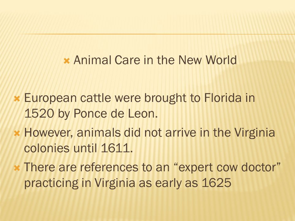 Animal Care in the New World