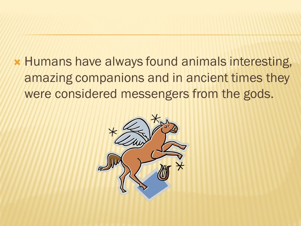 Humans have always found animals interesting, amazing companions and in ancient times they were considered messengers from the gods.