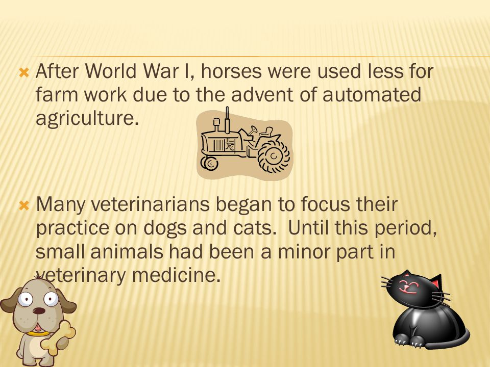 After World War I, horses were used less for farm work due to the advent of automated agriculture.