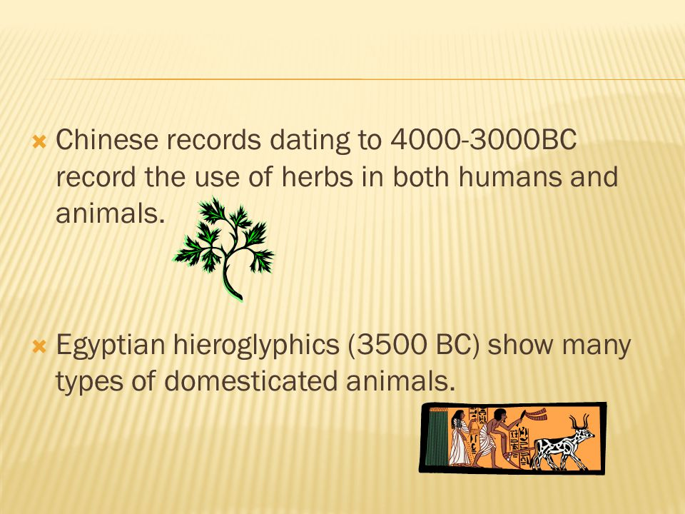 Chinese records dating to 4000-3000BC record the use of herbs in both humans and animals.