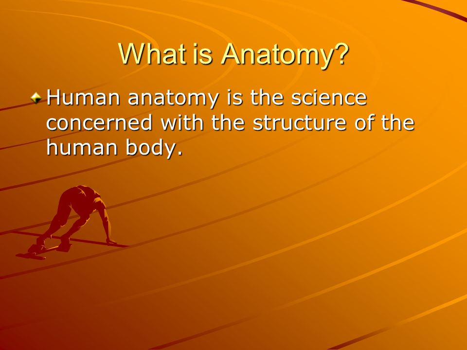 What is Anatomy Human anatomy is the science concerned with the structure of the human body.