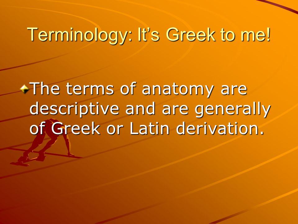 Terminology: It's Greek to me!