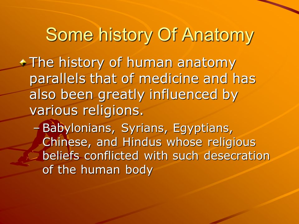 Some history Of Anatomy