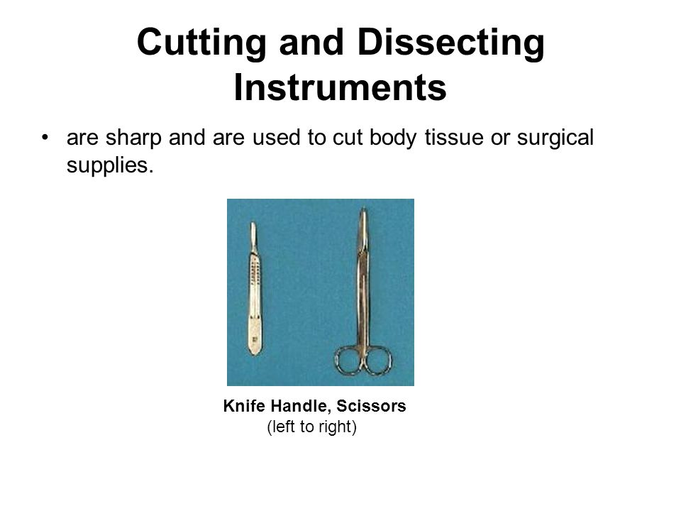 Cutting and Dissecting Instruments