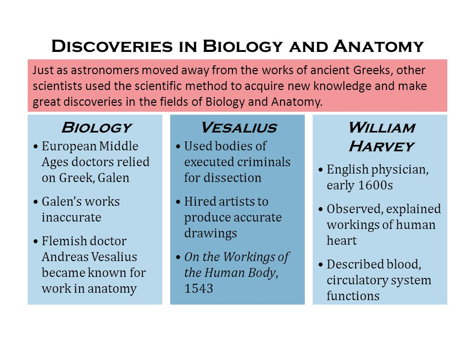Discoveries in Biology and Anatomy