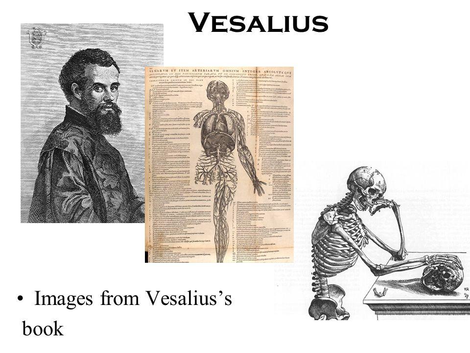 Vesalius Images from Vesalius's book