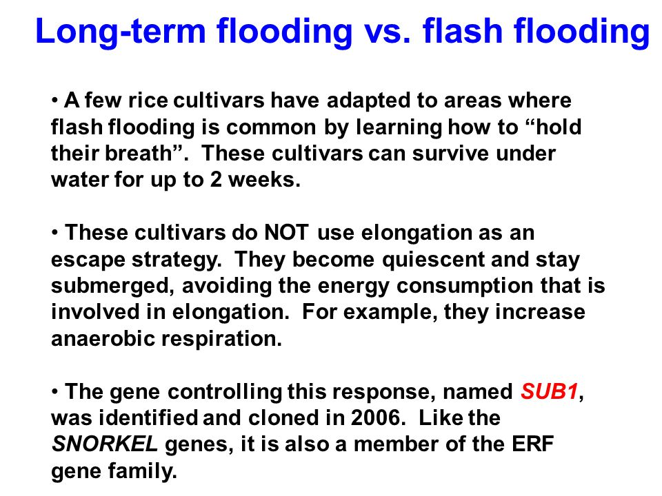 Long-term flooding vs. flash flooding
