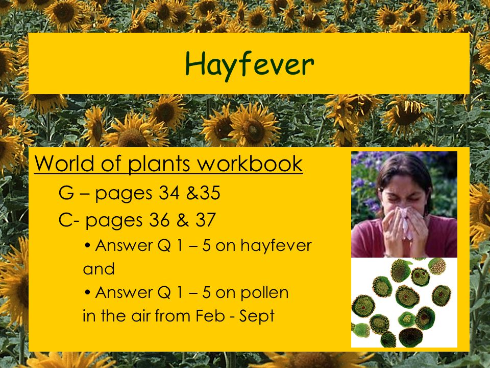 Hayfever World of plants workbook G – pages 34 &35 C- pages 36 & 37