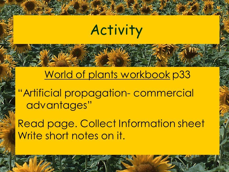 World of plants workbook p33