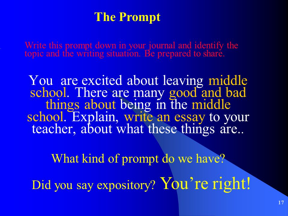 What kind of prompt do we have