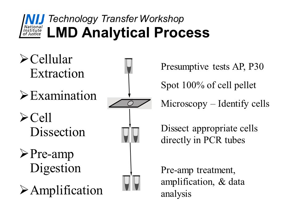 LMD Analytical Process