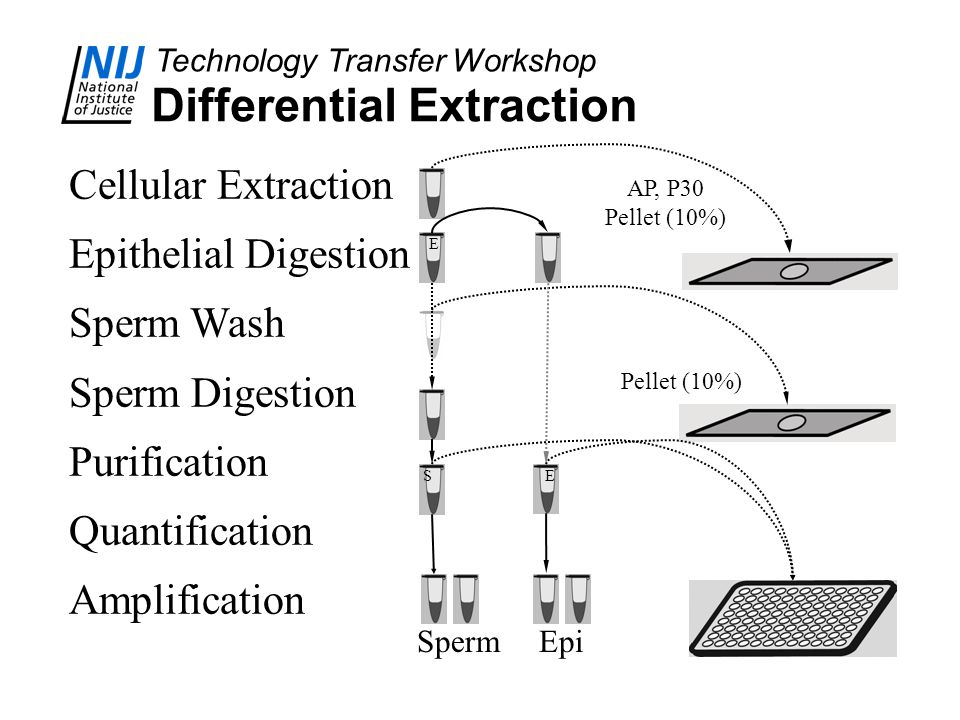 Differential Extraction