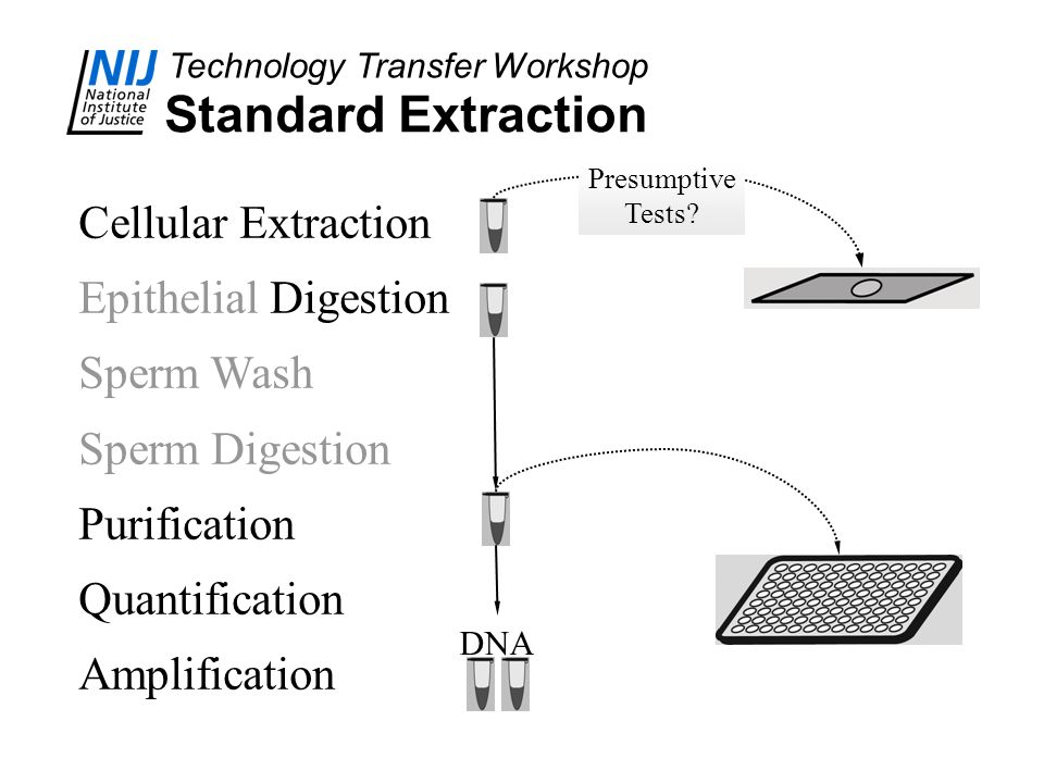 Standard Extraction Cellular Extraction Epithelial Digestion