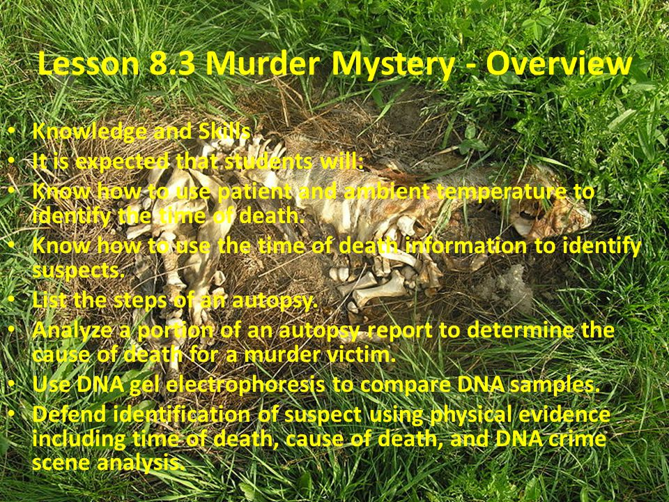 Lesson 8.3 Murder Mystery - Overview