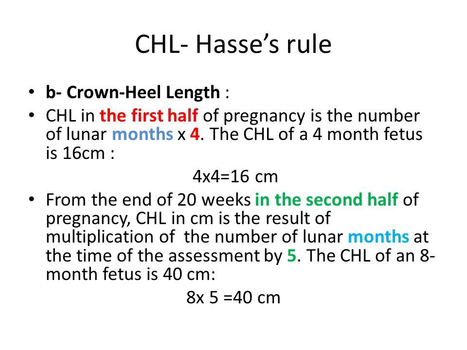 CHL- Hasse's rule b- Crown-Heel Length :