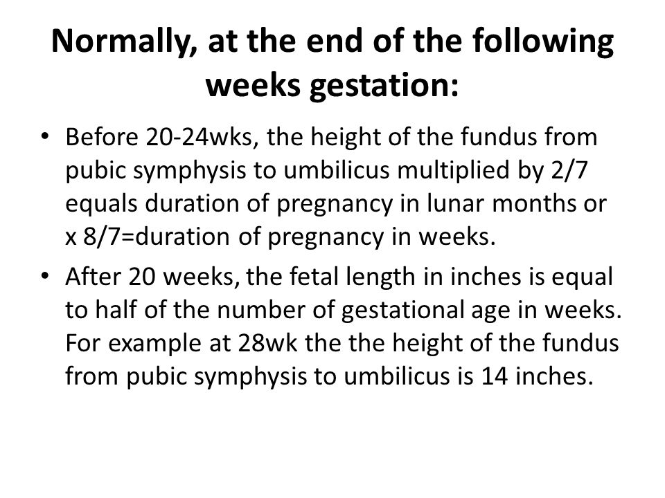 Normally, at the end of the following weeks gestation: