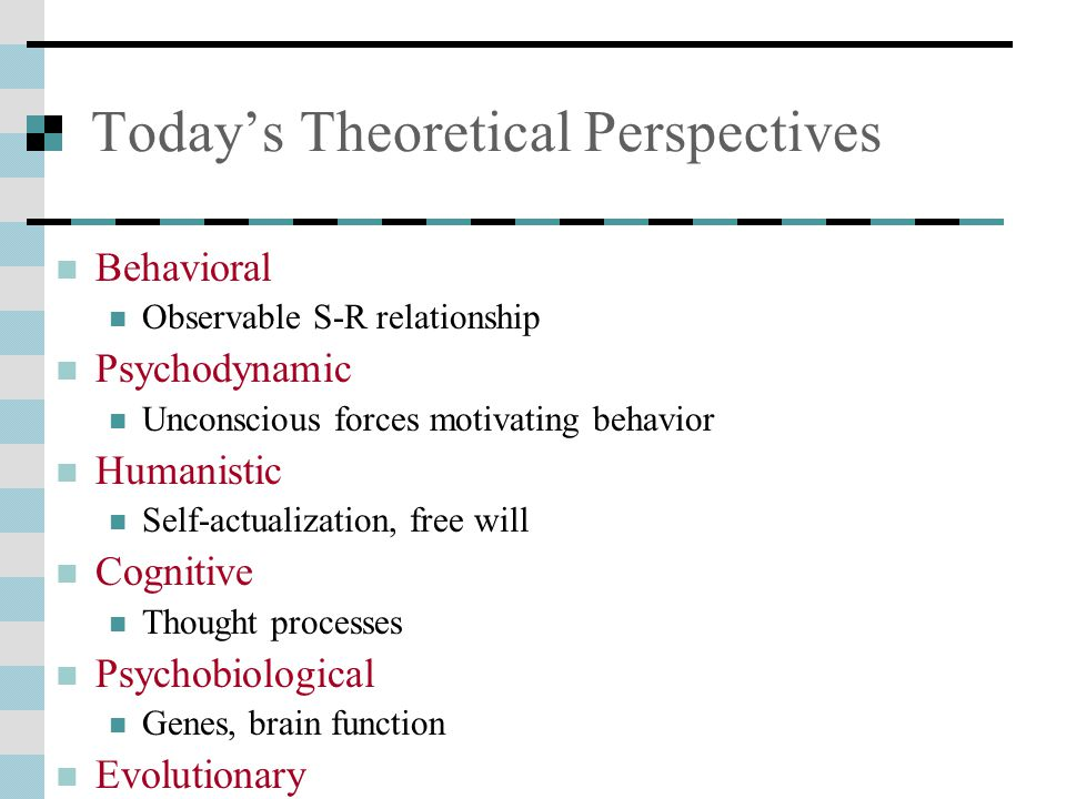 Today's Theoretical Perspectives
