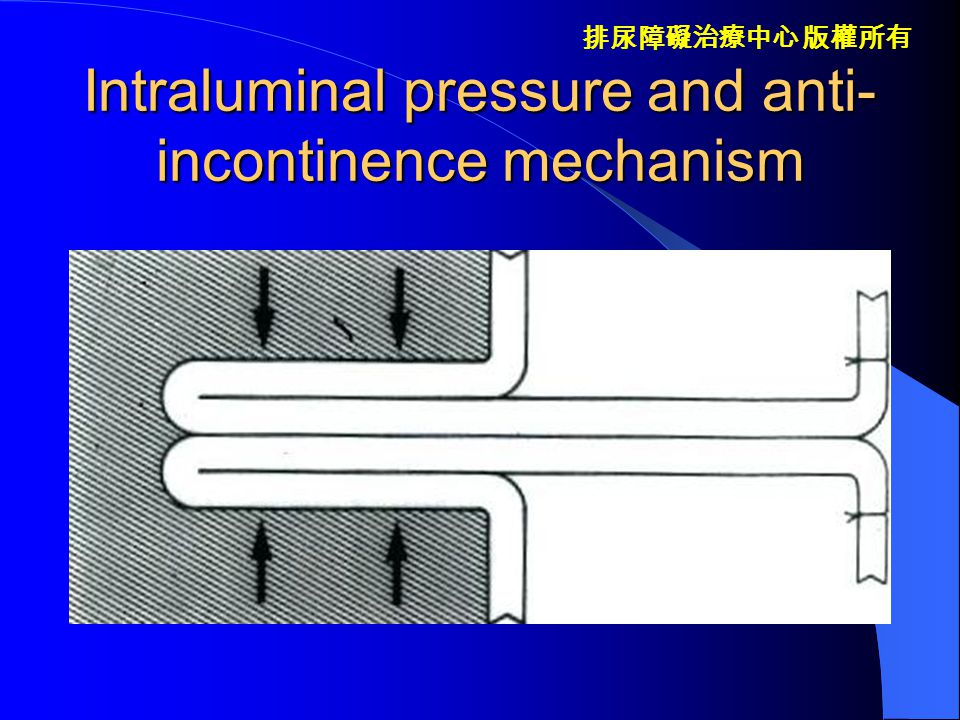 Intraluminal pressure and anti-incontinence mechanism