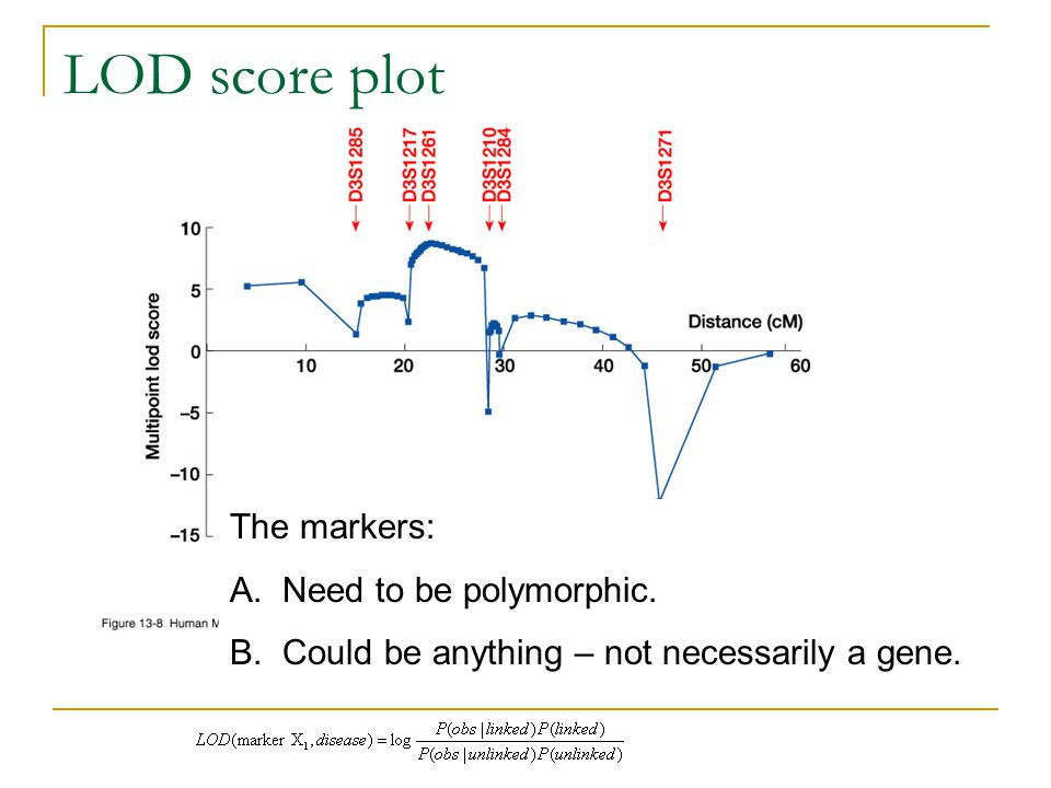 LOD score plot The markers: Need to be polymorphic.