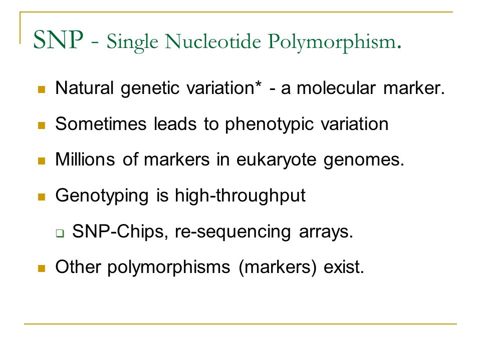 SNP - Single Nucleotide Polymorphism.
