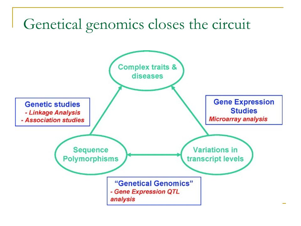 Genetical genomics closes the circuit