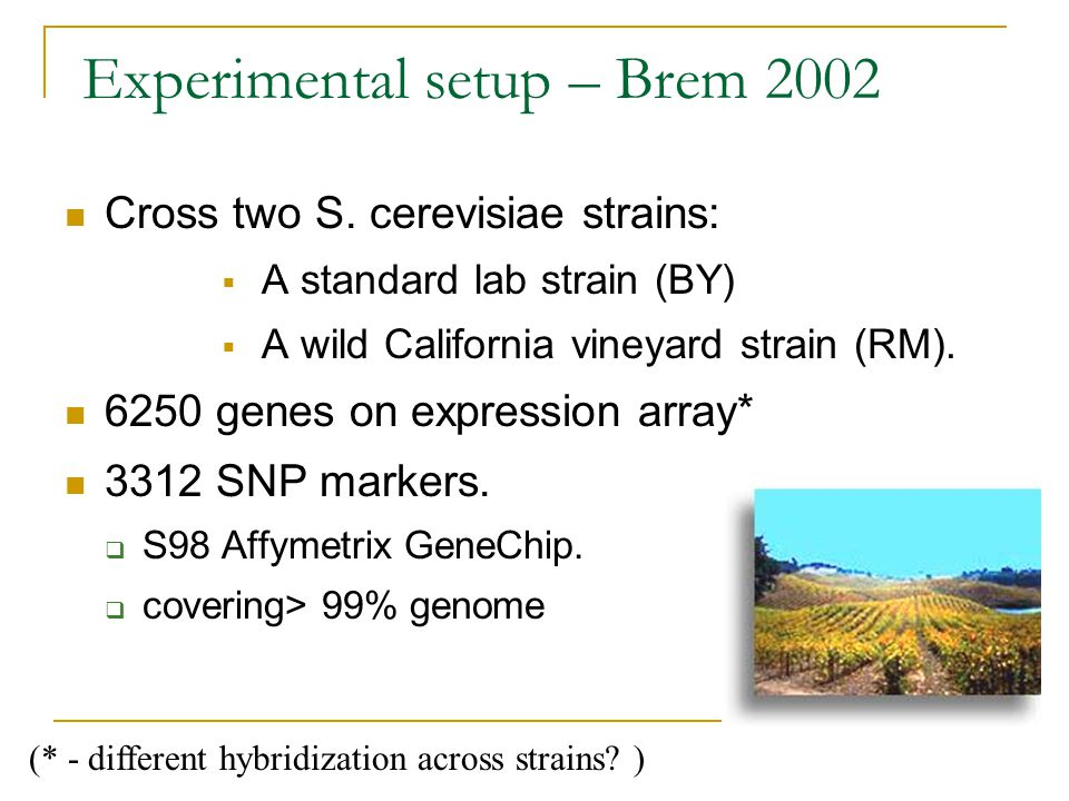 Experimental setup – Brem 2002