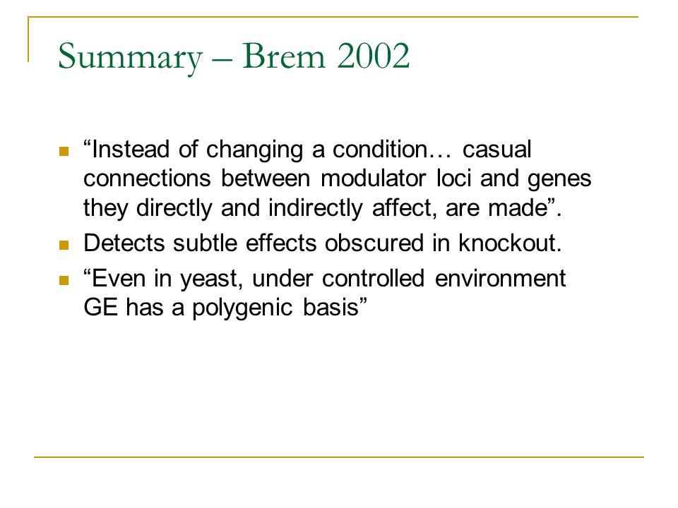 Summary – Brem 2002