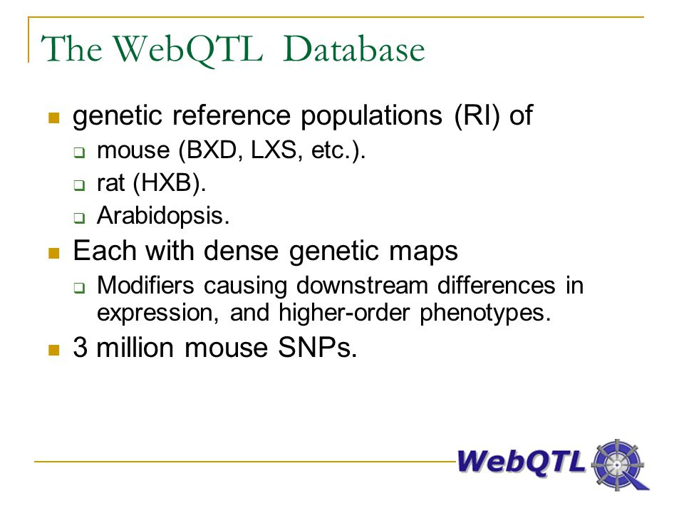 The WebQTL Database genetic reference populations (RI) of