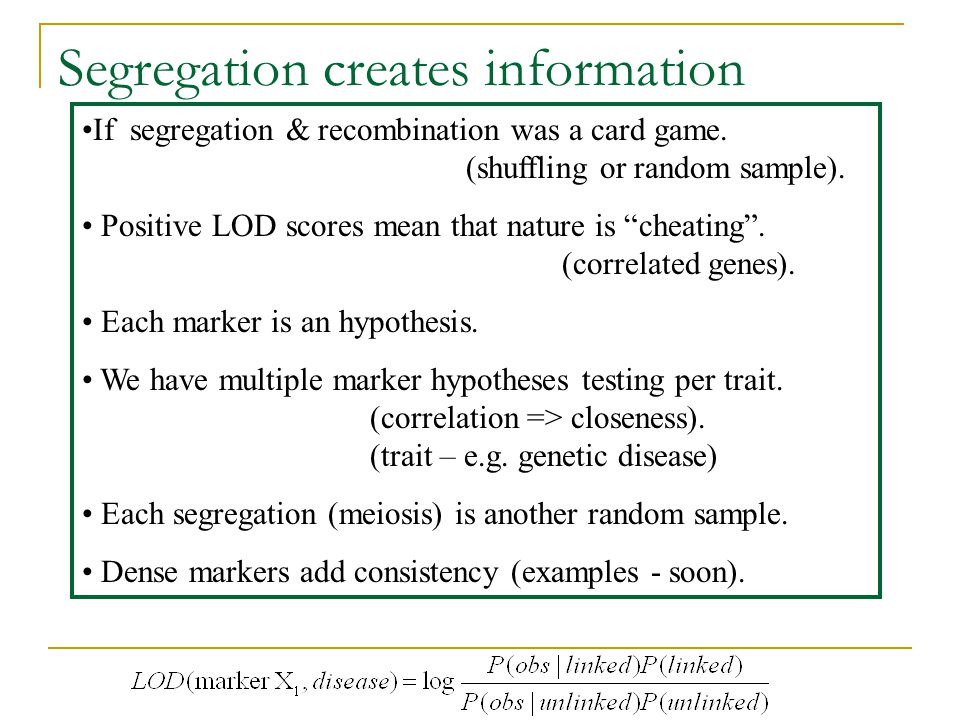 Segregation creates information