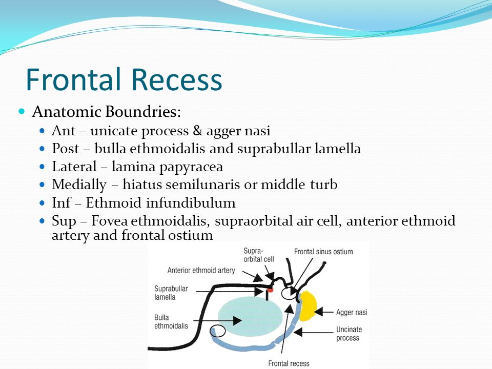 Frontal Recess Anatomic Boundries: Ant – unicate process & agger nasi
