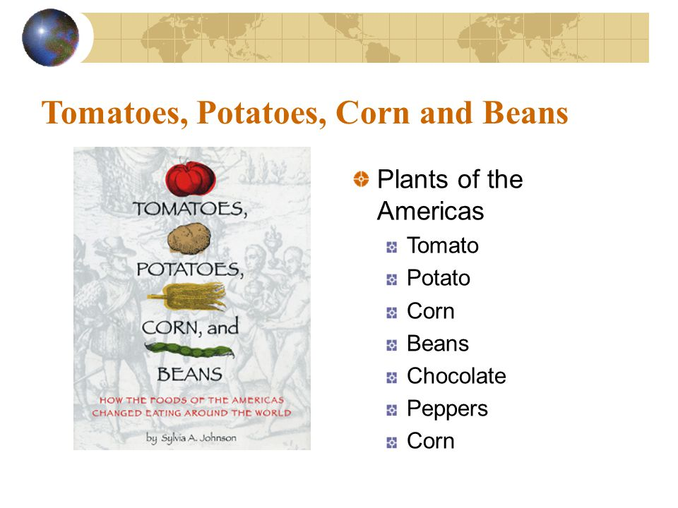 Tomatoes, Potatoes, Corn and Beans