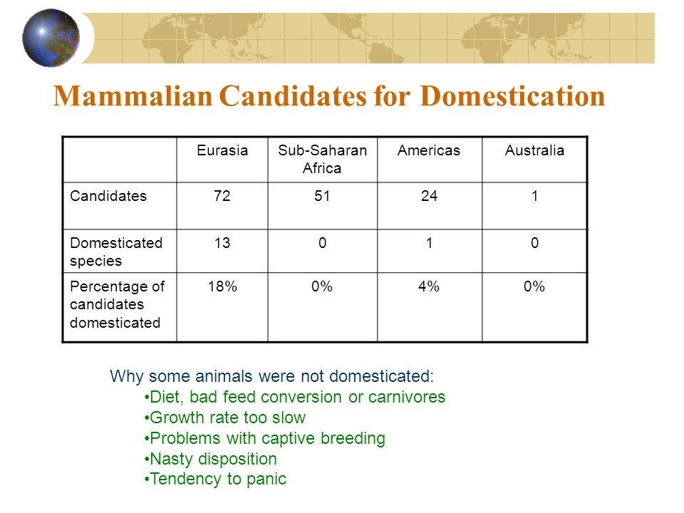 Mammalian Candidates for Domestication